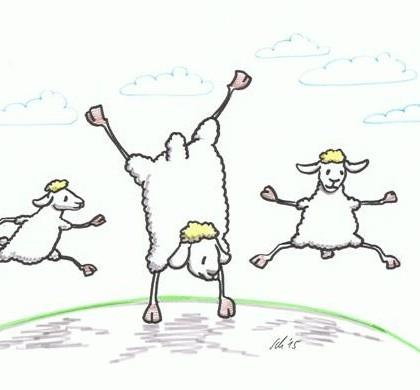 Schaf Turnen, Sport, Freude 2