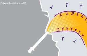 grippeimpfung-1-2